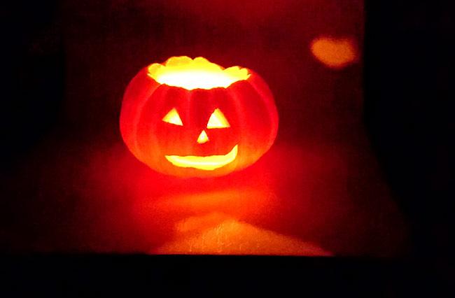 【小山市】「いちごの里」で「かぼちゃランタン」作れるぞ! - クラーケンハック