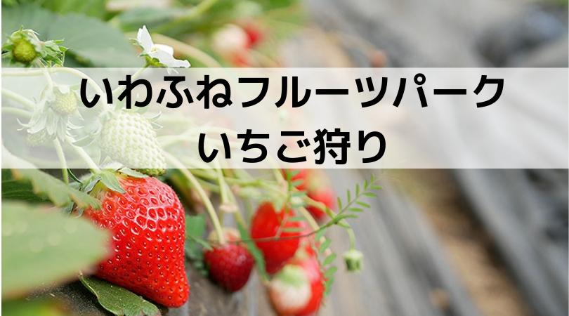 【栃木市】いわふねフルーツパークでいちご狩り - クラーケンハック