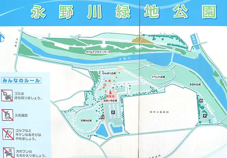 永野川緑地公園 全体図