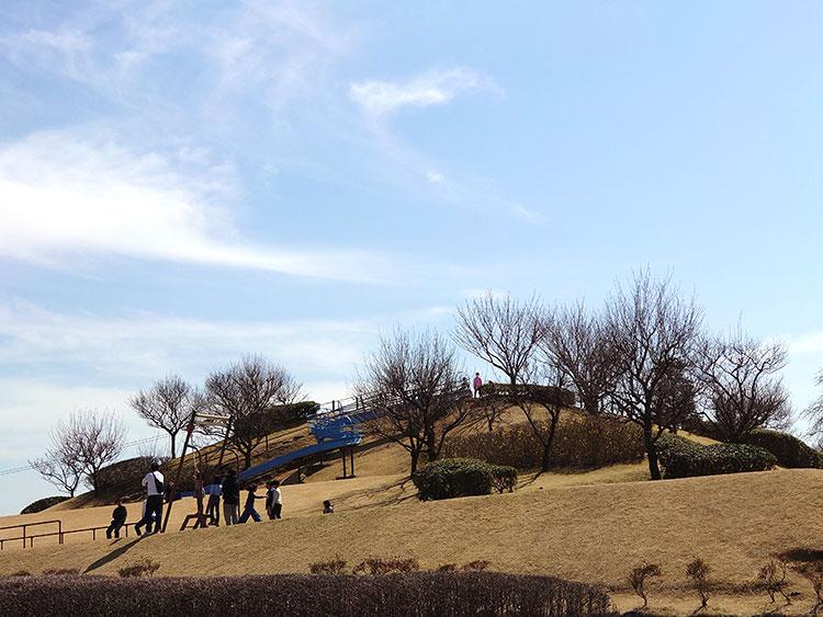 蔓巻公園 公園中央にある築山