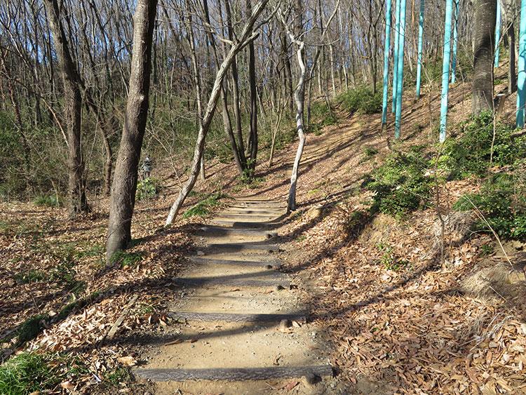 佐野運動公園の登り_平坦