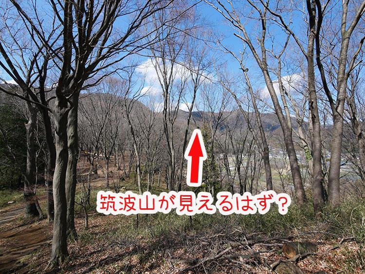 かかしの里 三景平 筑波山