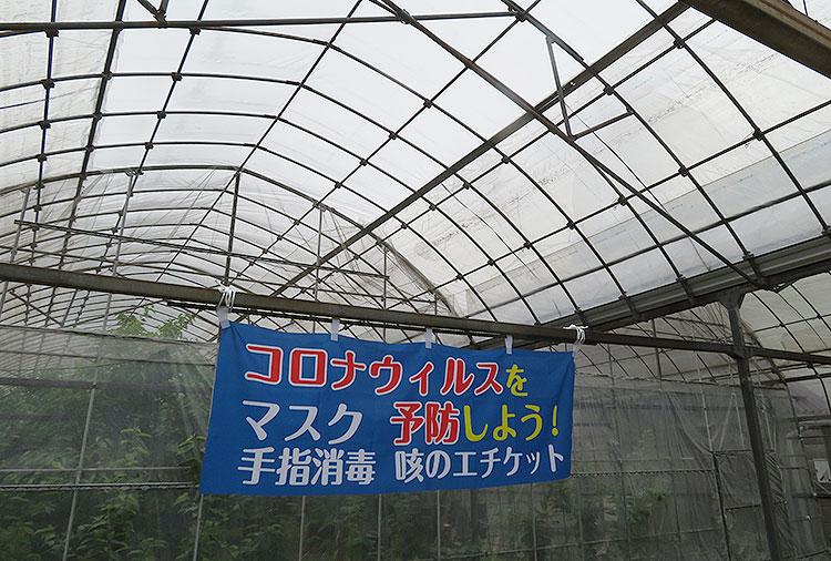 こまき園 コロナ1
