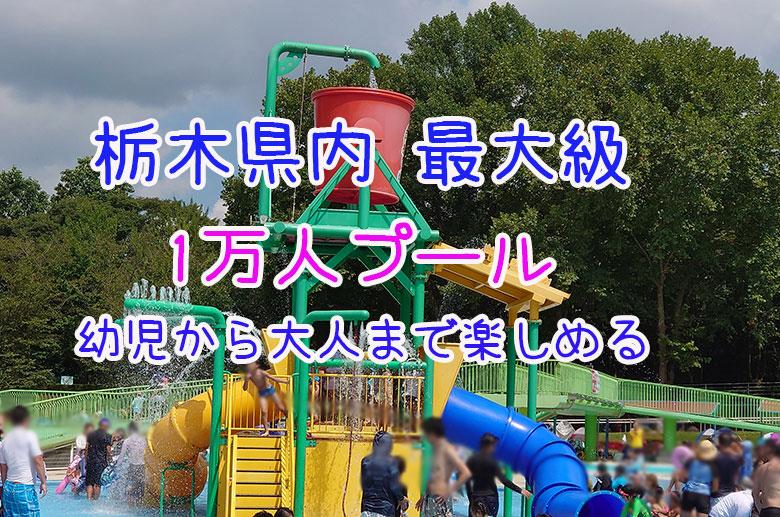 【真岡市】一万人プールのスライダー&幼児プールまとめ - クラーケンハック