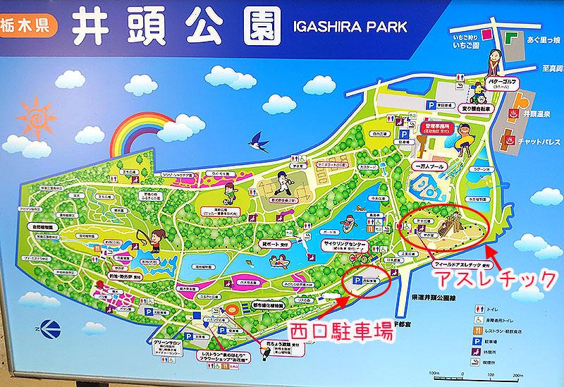 井頭公園マップ