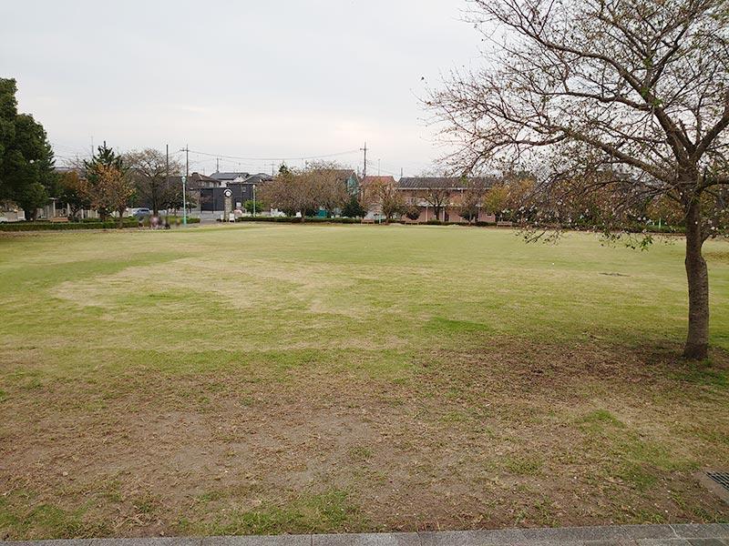 栃木県‗久下田公園‗芝生