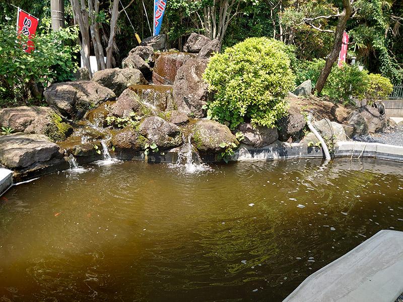 小山市 遊水園 oyama-water-park 金魚釣り